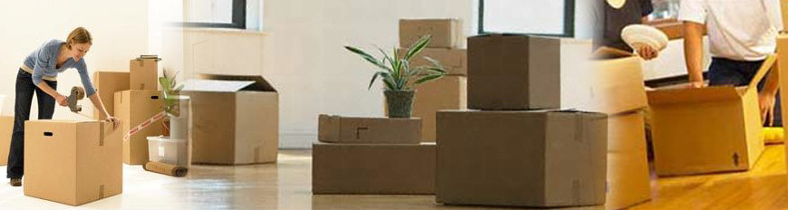 packaging and moving services in aundh