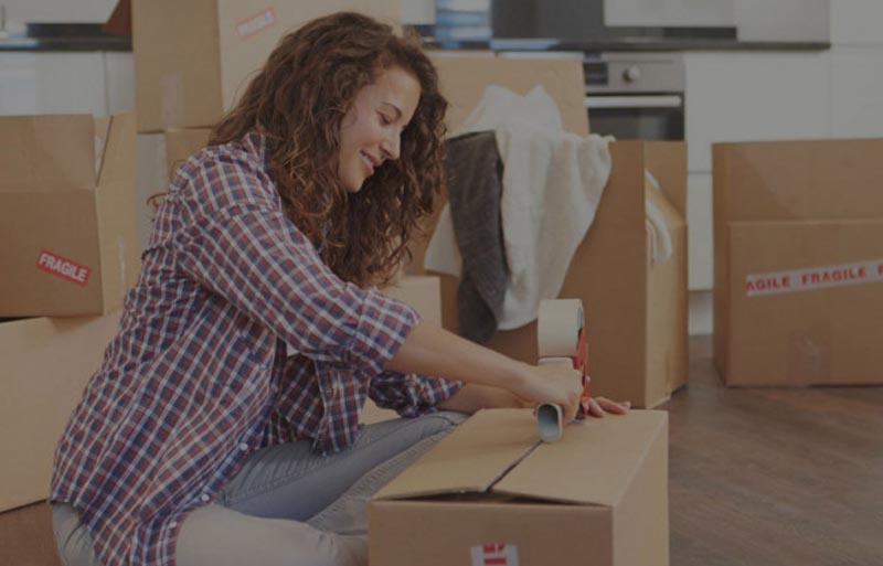 packaging and moving services in hadapsar